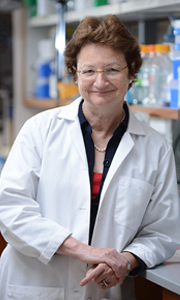 Kathy High, MD, HHMI: Honored for Gene Therapy Blindness Trial